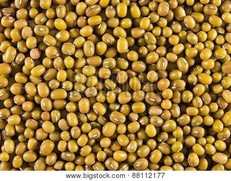 Mung or moong beans