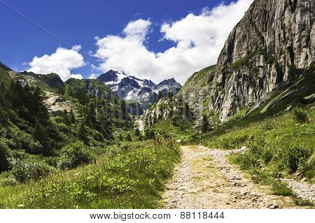Mountain Path And Landscape