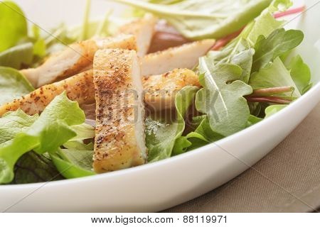 salad from mixed herbs and fried chicken