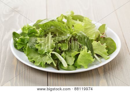 mix salad from different herbs on wooden table