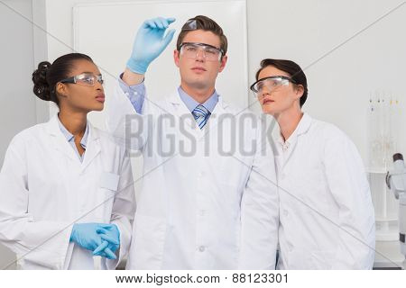 Scientists looking at experimentation in the laboratory
