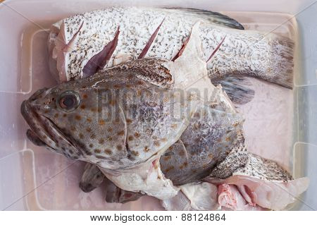 Meat Of Freshness Grouper Fish In Sea Food Market Preparing To Cooking