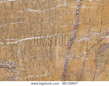 Natural Brown Marble