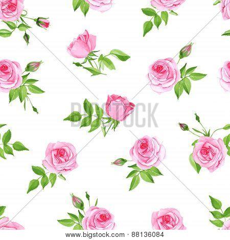 Vintage Pink Rose Seamless Vector Print