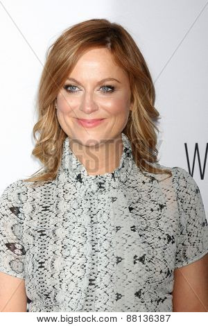 LOS ANGELES - FEB 15:  Amy Poehler at the