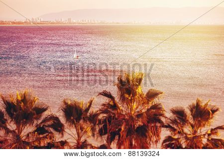 Sea View Background With Blurred Tilt-shift Effect