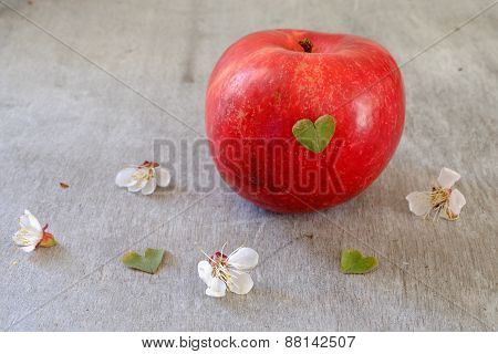 Red Apple On A Wooden Table With Green Heart