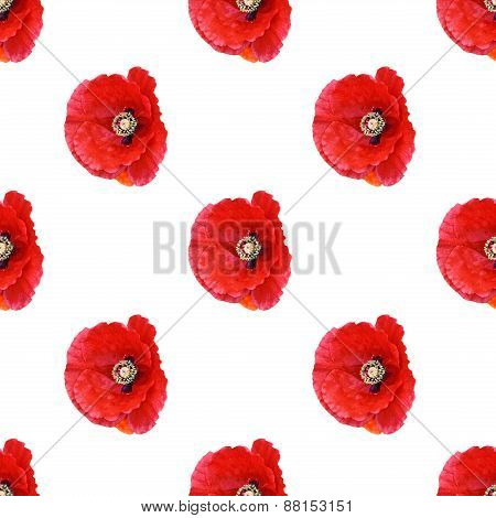 Seamless Pattern Red Poppies 1