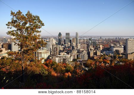 Montreal City During Fall