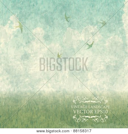 Vintage summer landscape with meadows and swallows. Vector grung