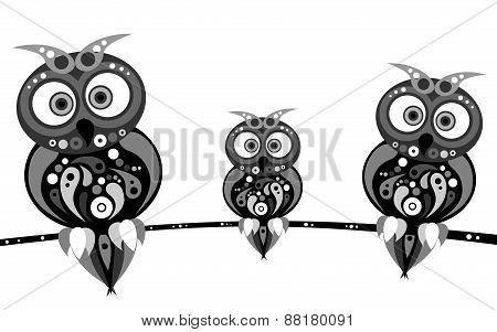 owls family black