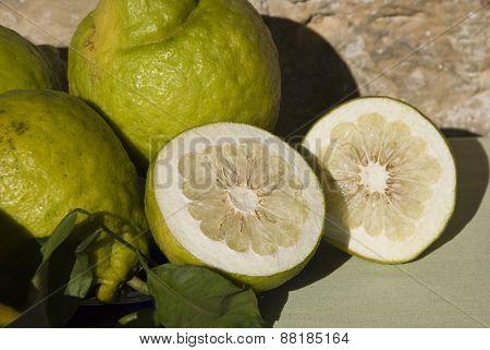 half citron cedro