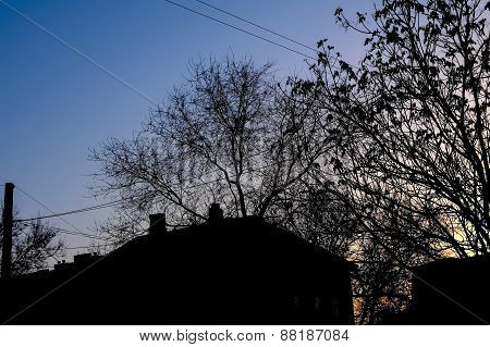 Silhouette of rural house and trees against morning sky a lot of copyspace