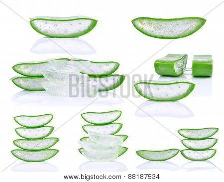 Set Of Aloe Vera Isolated On White Background