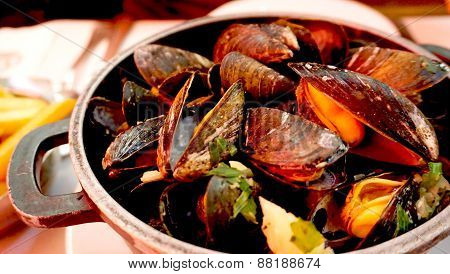 Baked Mussels With White Wine In Belgium