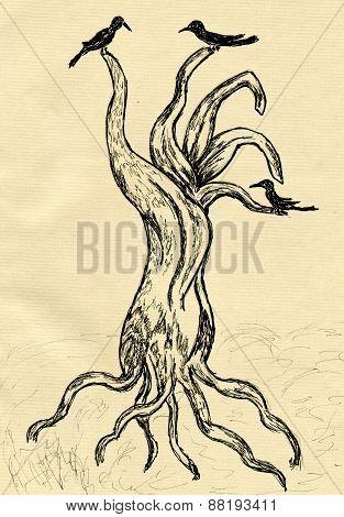 Dead Tree Sketch