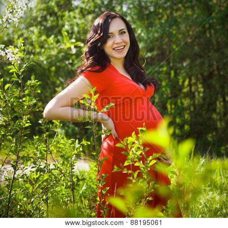 Beautiful Pregnant Woman In Red Dress In The Flowering Spring Park