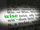 image of wise  - Dictionary definition of the word  - JPG