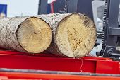 foto of sawing  - Sawing boards from logs with modern sawmill - JPG