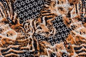 stock photo of leopard  - texture of print fabric striped leopard for background - JPG