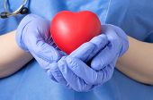 image of heart surgery  - Female doctor holding a red heart shape - JPG