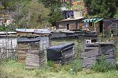 pic of wooden shack  - Wooden houses in an African informal settlement - JPG