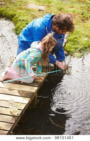 Father And Daughter Fishing In Pond With Net
