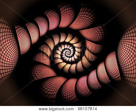 Fractal Illustration Of A Spiral In The Box