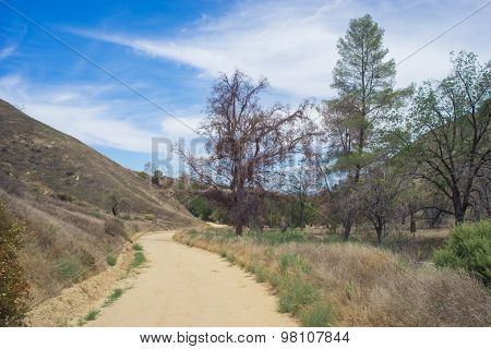 Winding Dirt Road In Canyon