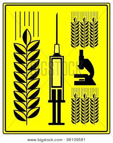Genetically Modified Wheat