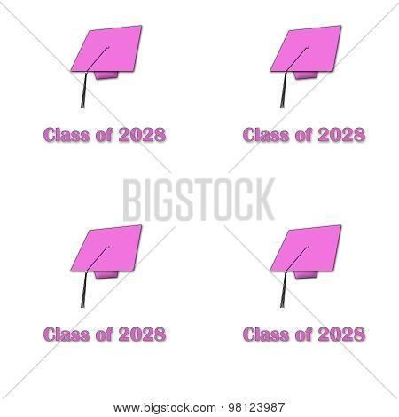 Class of 2028 Pink on White Pattern Large