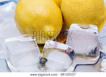 Chilled Lemon,  Ice, Fragment