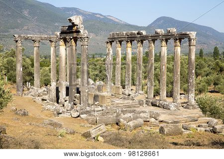Columns Of The Ancient Temple Of Zeus At Euromos