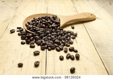Coffee Crop Beans On  Spoon