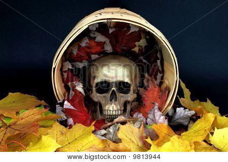 Halloween Etude.