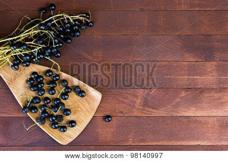 Branches Of Bird Cherry (prunus Padus) With Ripe Berries On A Wooden Table With Copy Space