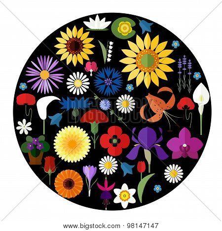 Flat Flower Circle