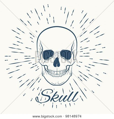 skull and vintage sun burst frame