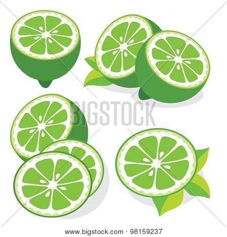 Lime Vector Illustrations