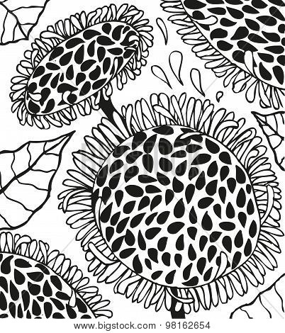 Background with doodling hand drawn sunflowers