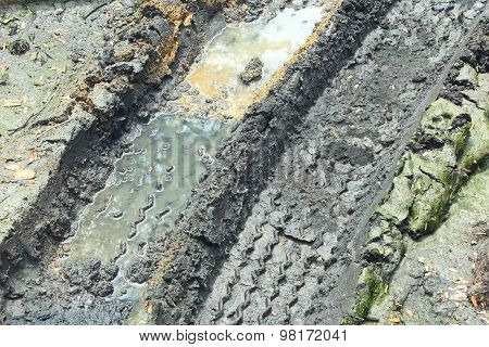 Wheel Track On The Muddy Road