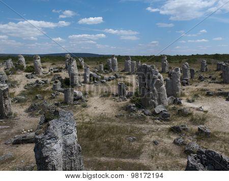 Stone Forest (pobiti Kamani) Near Varna, Geological Phenomenon
