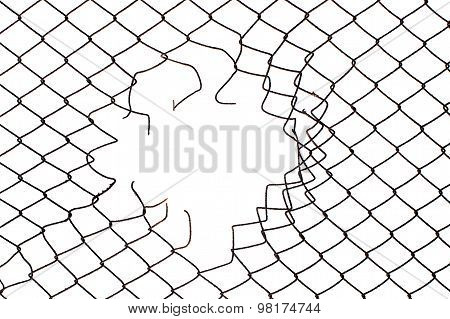 Center Hole In The Mesh Wire Fence