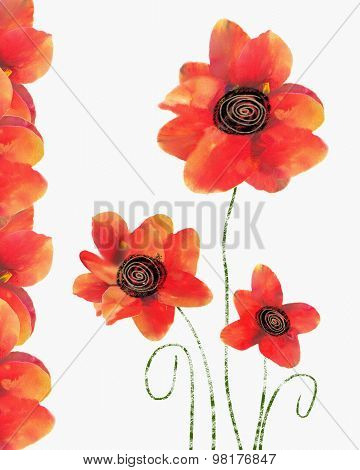 Floral Card With Isolated Red Poppy On White Background.