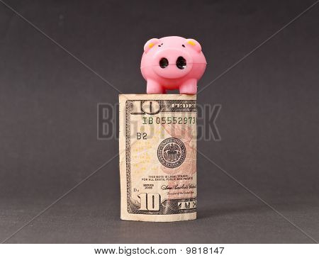 Little Pig On Ten Dollar Bill