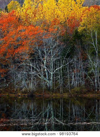 Colorful Fall Foliage Water Reflections