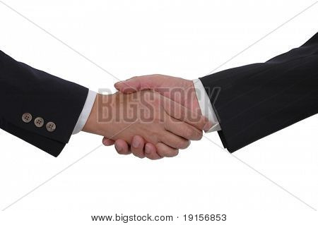 Handshake with a white background