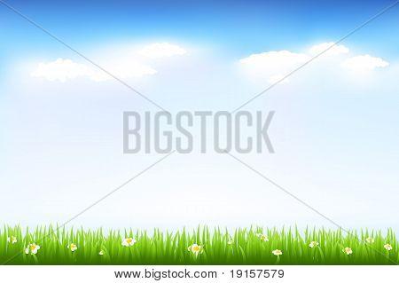 Beautiful Green Landscape