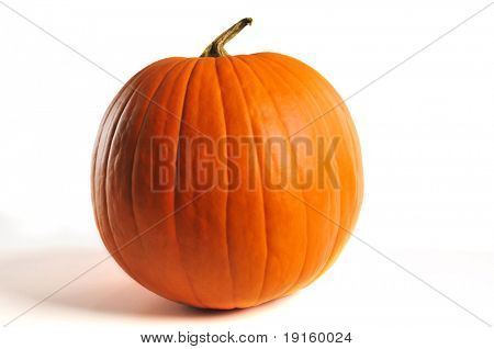 Pumpkin close up isolated on a white background