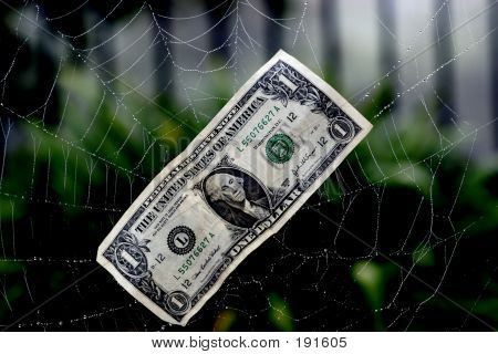 Caught In A Financial Web
